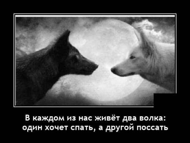 Демотиватор про волков