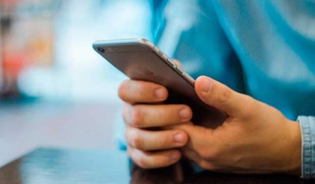 Предприниматели назвали самые востребованные цифровые услуги и сервисы для бизнеса в России