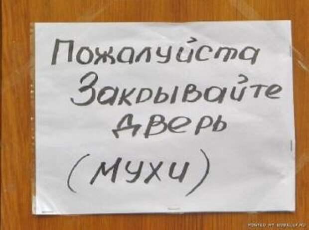Смешные истории))