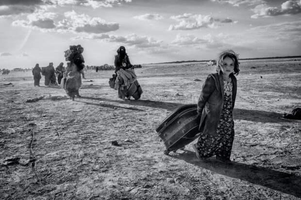 Финалисты конкурса Sony World Photography Awards 2020