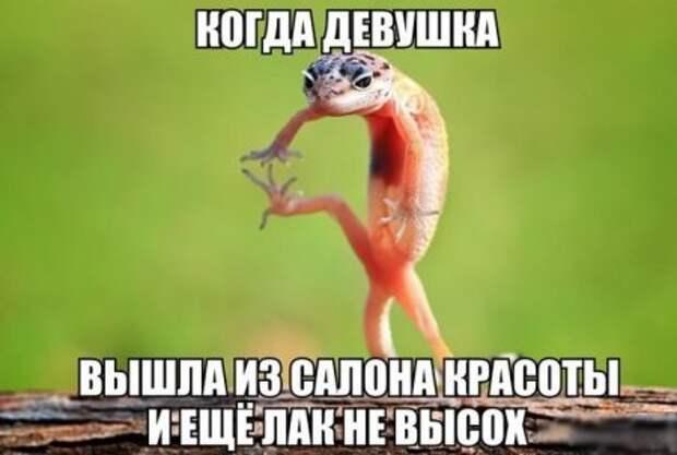 1470040364_smk-10