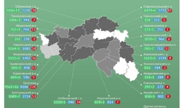 Две женщины умерли откоронавируса вБелгородской области засутки