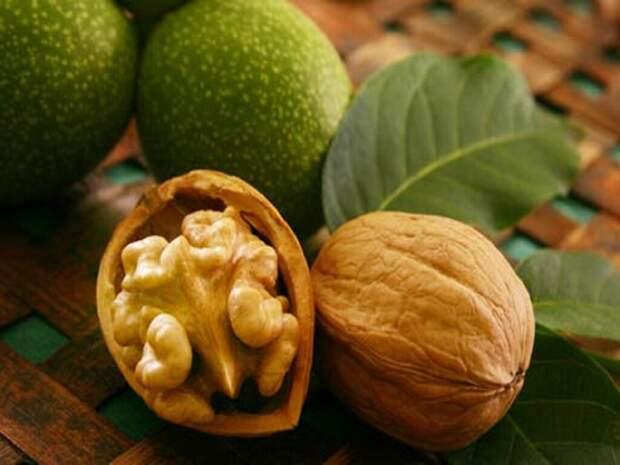 Оболочка грецкого ореха не имеет аналогов в природе