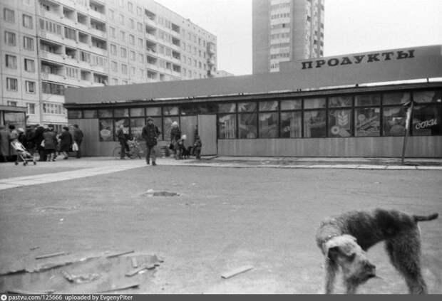 """Типичное народное прозвище магазинов середины 80-х – середины 90-х – """"стекляшка"""". Эта находилась на проспекте Луначарского. Санкт-Петербург, 1992 год. история, факты, фото"""