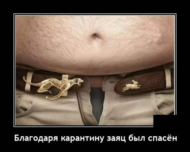 Демотиватор про лишний вес