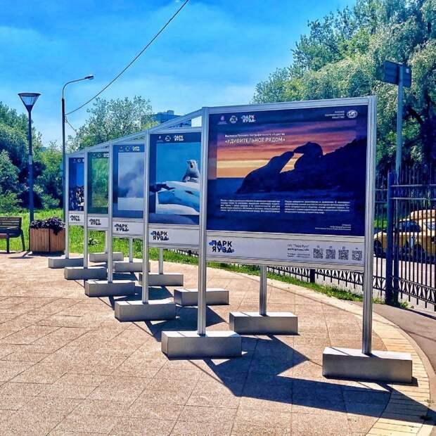 В парке «Яуза» открылась фотовыставка диких животных