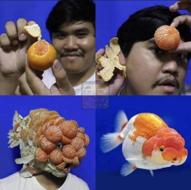 Гений косплея с мандаринкой