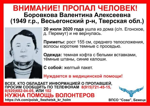Пожилые мужчина и женщина пропали в Тверской области