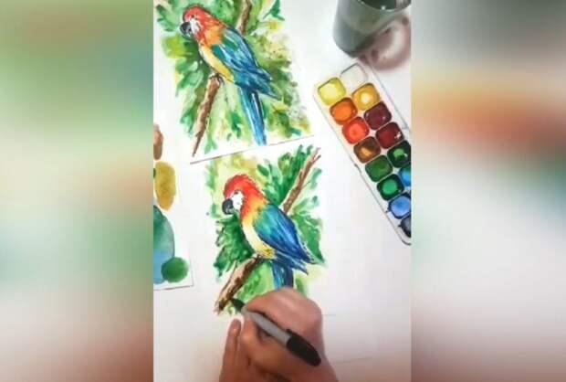В Северном Тушине художник и дизайнер научит рисовать акварелью