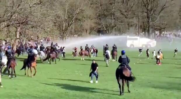 Шутка о концерте в бельгийском лесу обернулась сражением толпы с полицией