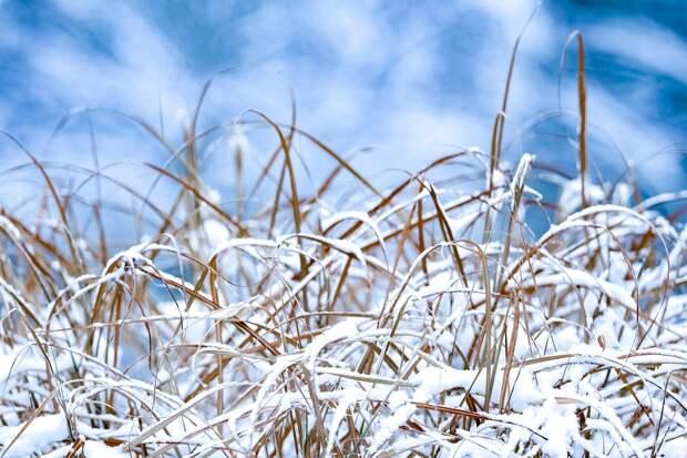 Небольшой снег и накат на дорогах ожидаются в Удмуртии в среду, 3 марта