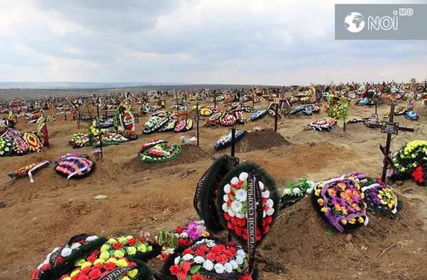 Мнение экспертов: Пластиковые украшения могил вредны для экологии
