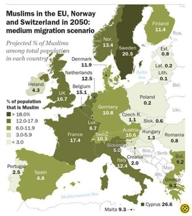 Какой процент будут составлять мусульмане среди жителей европейских стран к 2050 году?