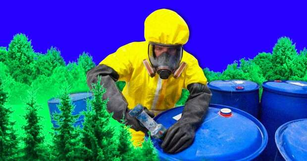 Компания по переработке опасных отходов сливала их в лес: 4 жутких факта