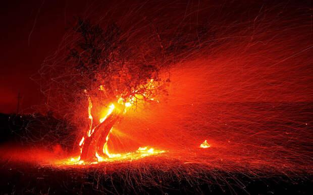Пожар, как неконтролируемый процесс горения
