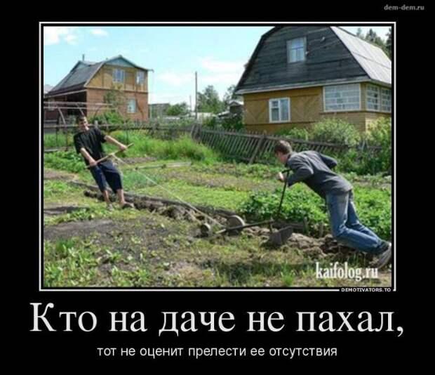 Объявление: «Познакомлюсь с активной женщиной. Коротко о cебе: 30 соток огорода...»