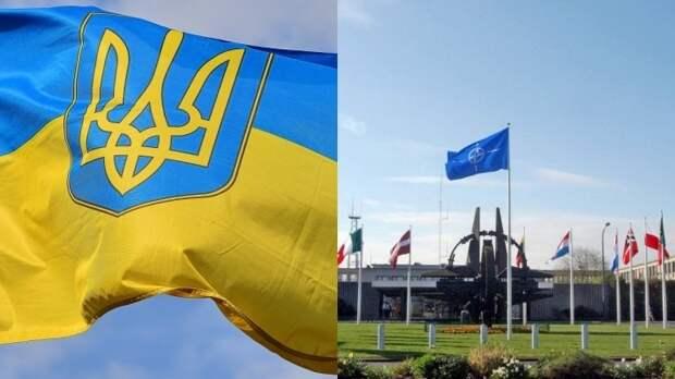 В бундестаге сообщили об отсутствии перспектив членства Украины в НАТО