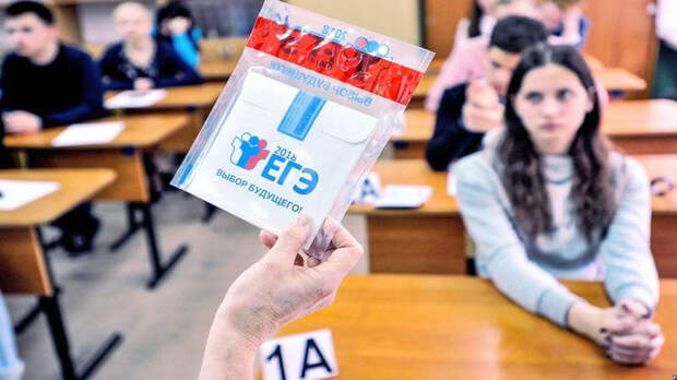Петербургских школьников начали судить за шпаргалки на ЕГЭ