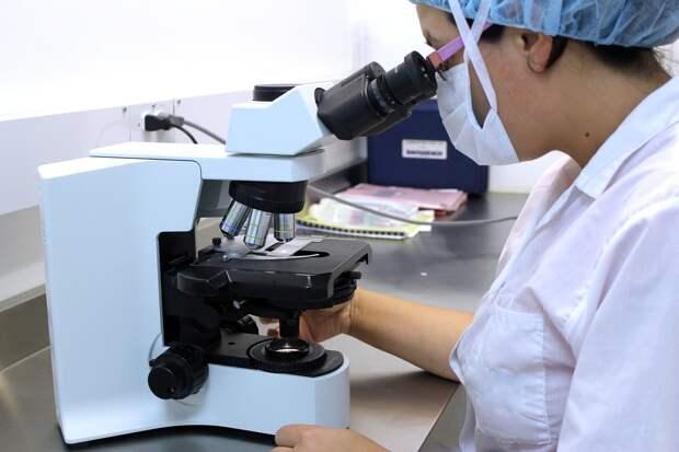 В Белоруссии разработали свою вакцину от коронавируса