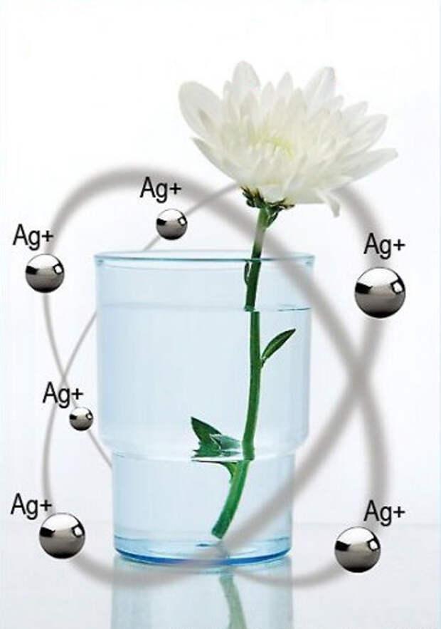 Лечебные свойства серебра и серебряной воды