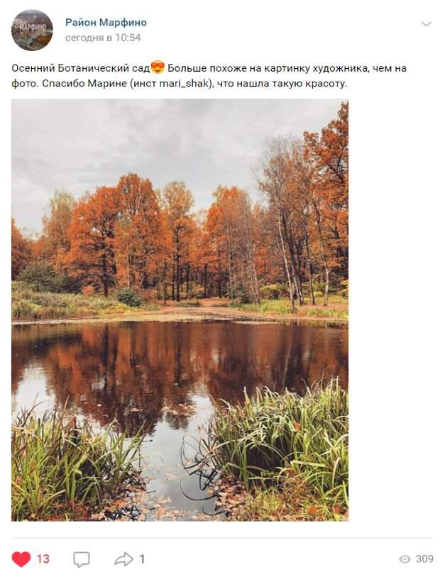 Фото дня: осень в Ботаническом саду