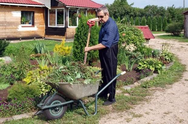 Дачники превращаются в садоводов. Чем отличаются СНТ и ОНТ?