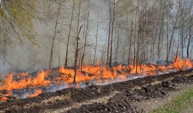 Моор призвал тюменцев соблюдать противопожарный режим вовремя майских праздников