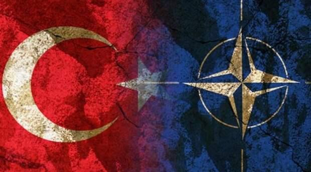 Турция против НАТО: ситуация в альянсе накаляется турция, нато, прибалтика
