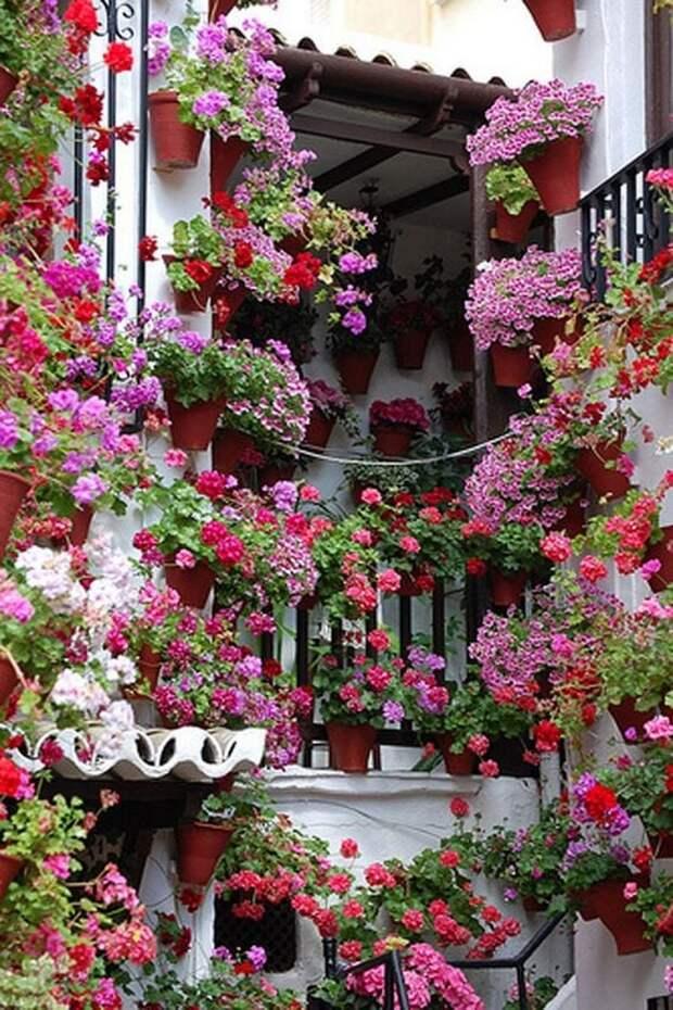 вертикальная цветочная клумба