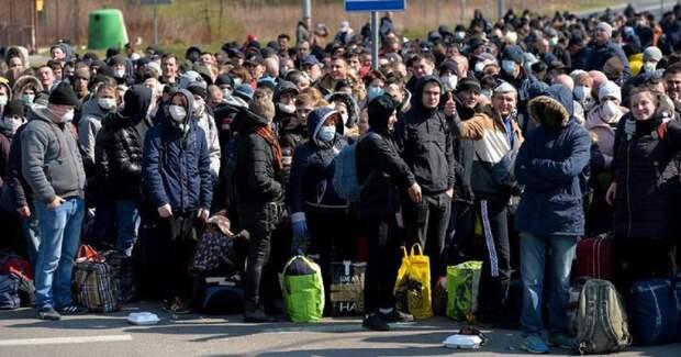 Заразиться, потерять работу и вернуться на Украину – паника заробитчан в Польше