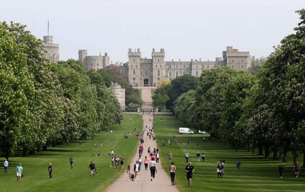 Стало известно, как королеву Елизавету II защищают от коронавируса