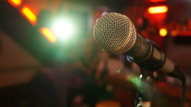 В Бабушкинском парке проведут мастер-класс по вокалу в онлайн-формате