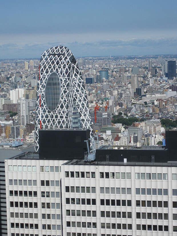 отдых в Токио
