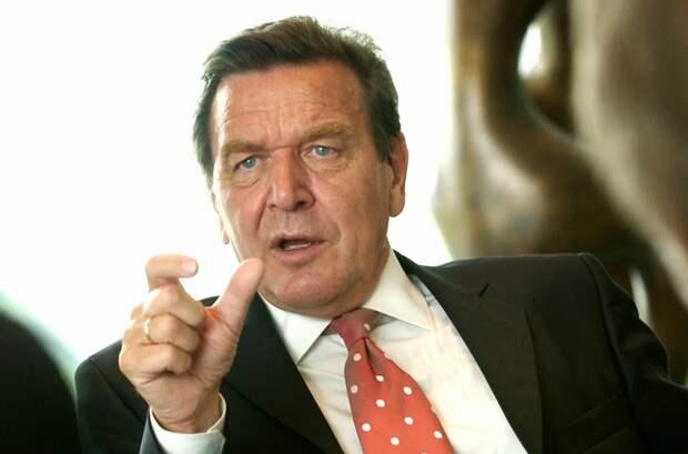 «Этот карлик никого не интересует» Шредер вышел из себя после выходки украинского посла в ФРГ