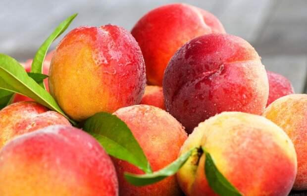 Весенняя подкормка персиков