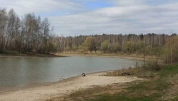 Администрация Подольска предложила Минэкологии обследовать Лаговский пруд