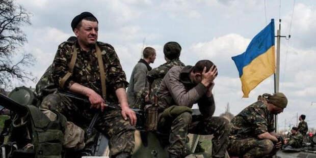 Новая война: Украина намекнула Венгрии на реальность АТО в Закарпатье