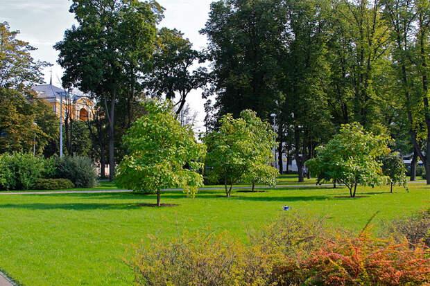 800px-Kronvalda_parks_-_7 (700x466, 588Kb)