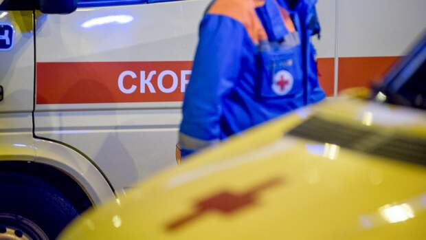 Женщина погибла при лобовом столкновении автомобилей в Новосибирской области