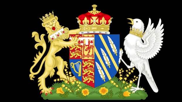 Жизнь Меган Маркл в королевской семье изобразили на гербе с задушенной птицей