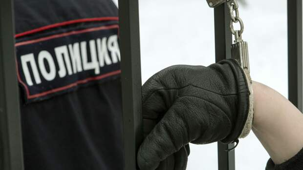 Полиция призвала петербуржцев не посещать несанкционированные митинги в городе