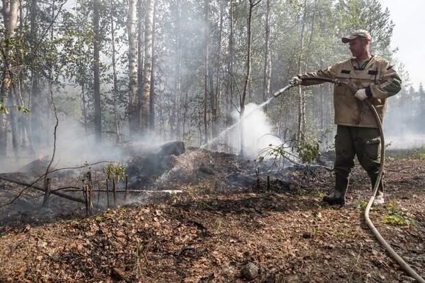 В Карелии не осталось действующих пожаров