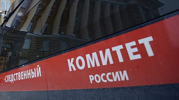 В Новосибирской области возбудили дело после того, как собака искусала ребёнка