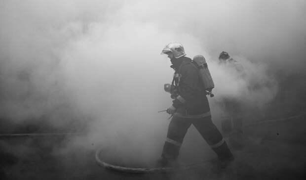 Будьте осторожны: вНижегородской области участились случаи возгорания сухой травы