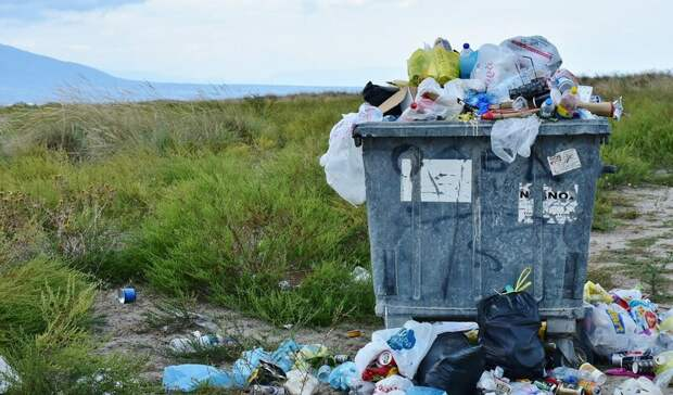 Жители Ростова предложили провести мусорную реформу