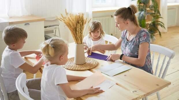 Многодетные семьи в РФ могут получить больше преференций благодаря новому закону