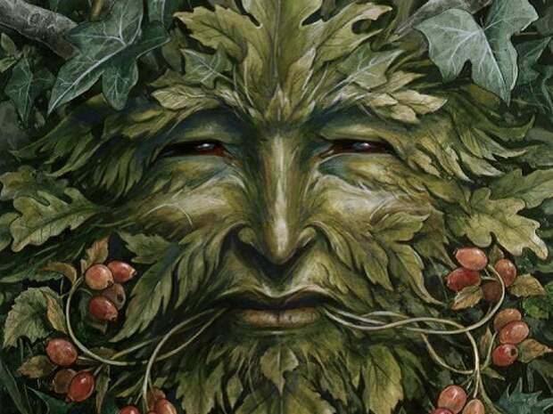 Как собрать дары леса и не заблудиться...
