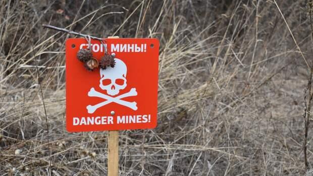 Боец ВСУ погиб во время уточнения карты минных полей на линии фронта в Донбассе