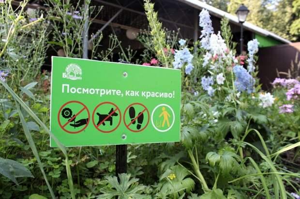 В Бабушкинском парке появились «зелёные таблички»