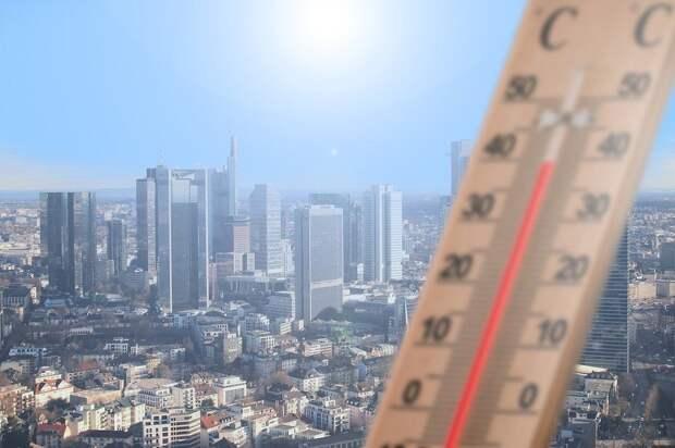 Жертвами аномальной жары на западе Канады могли стать 808 человек